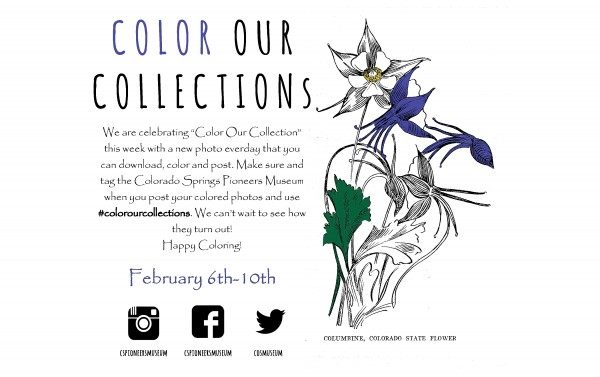 Color Our Collection 2