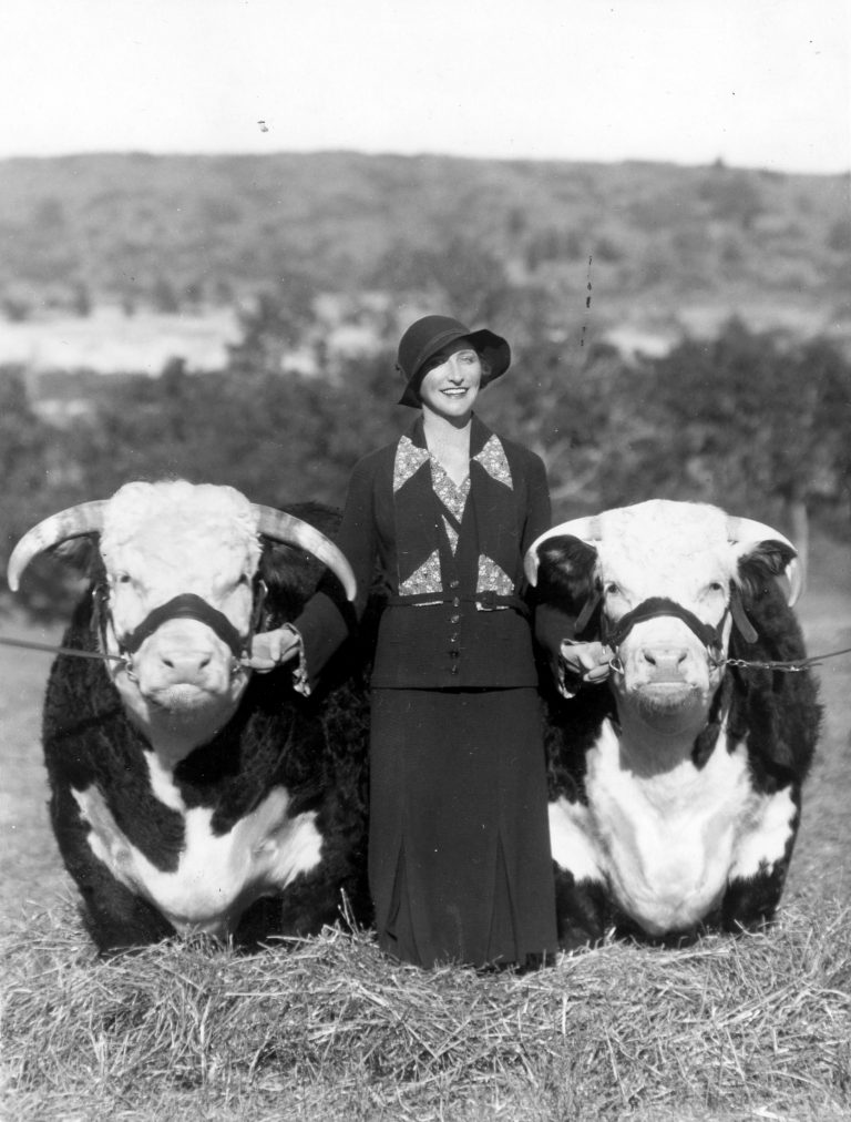 Photograph of Ruth Lewis with Prize-Winning Banning-Lewis Cattle, ca. 1939. Generously donated by Dennis Walter, S997.137.8.